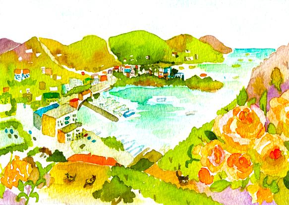 Virgin Islands (British )